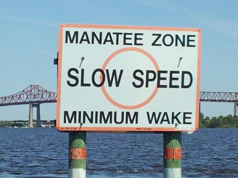 Manatee News zone 11 16 2015